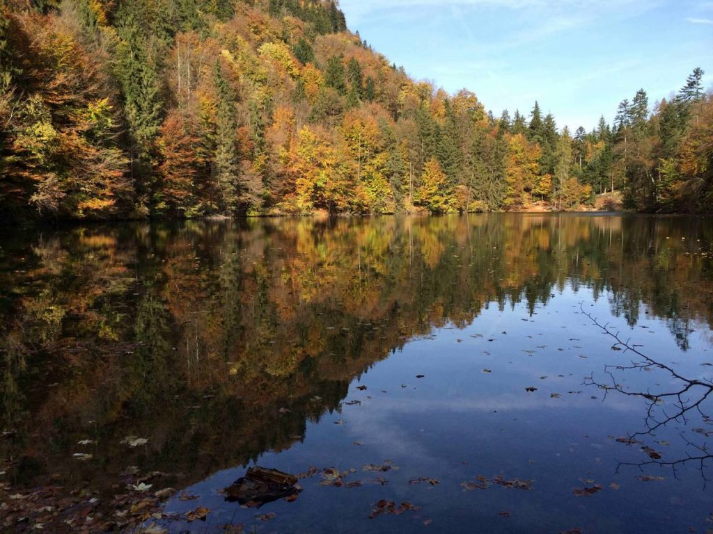 Pfrillsee Herbst
